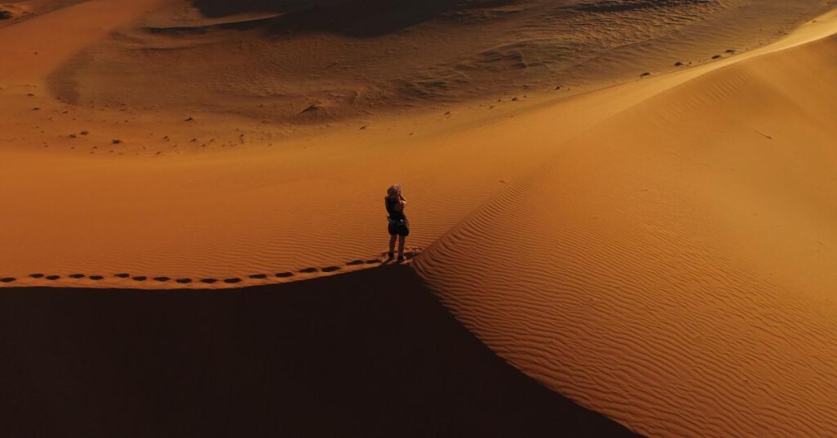 El humano en el desierto