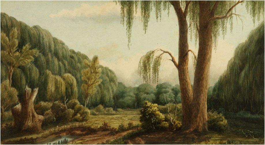 Bosque de Palermo, nació en una atmósfera de potente dramatismo