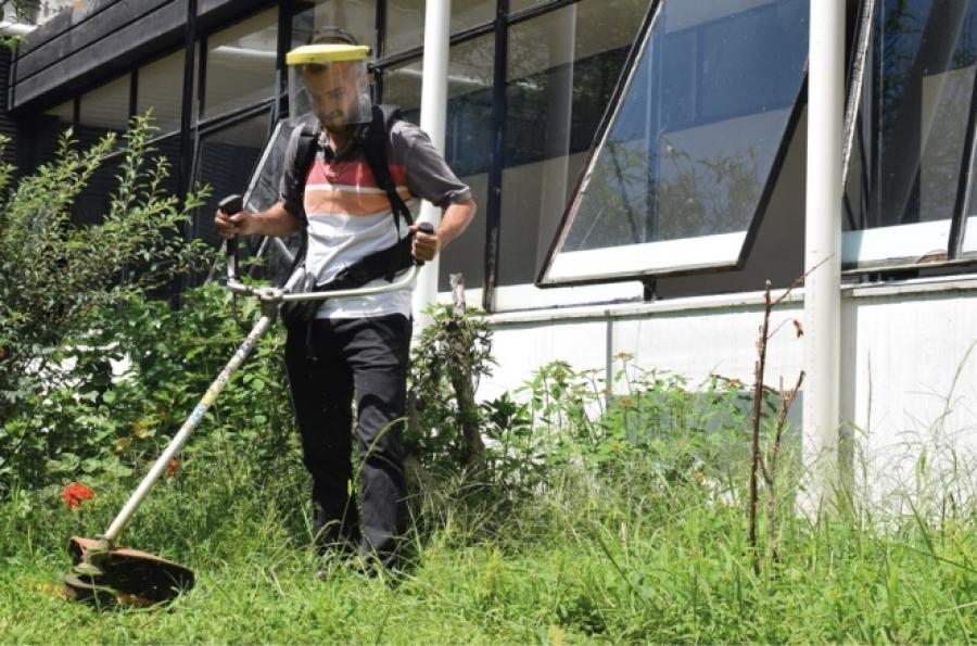 Jujuy, la primera en abrir su turismo interno, es la que tiene mayor casos de dengue